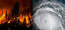 Hurricanes and Wildfires